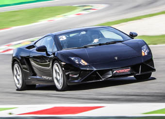 Drive a Lamborghini Gallardo in Monza with Puresport