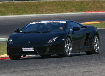 Prova una Lamborghini Gallardo in pista con Puresport a Vallelunga